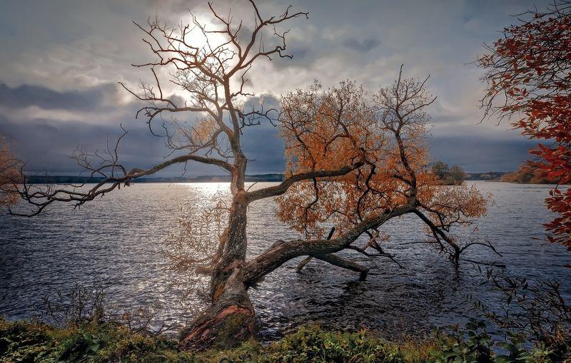 пейзаж,осень,озеро,просвет,облака Непогода.photo preview