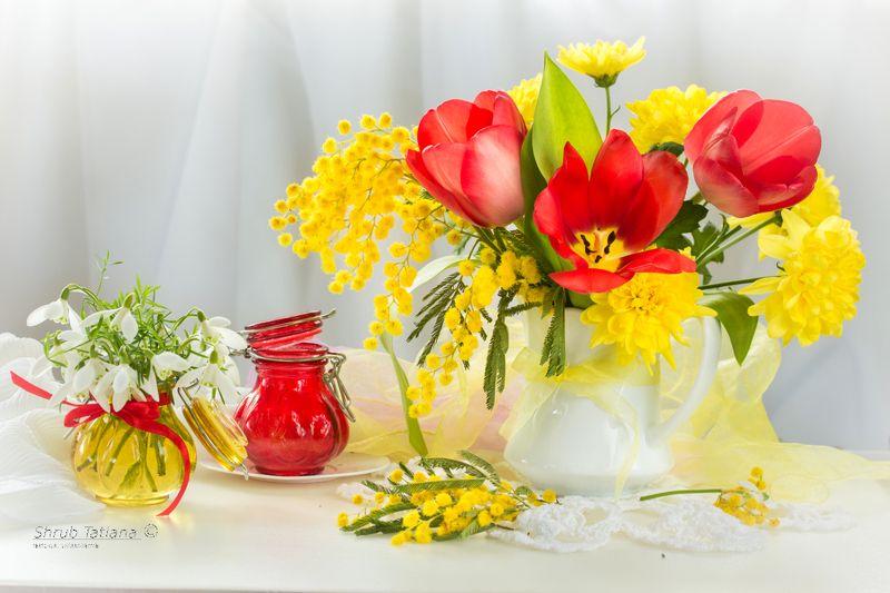 природа, весна, первоцветы, подснежники, мимоза, тюльпаны С наступающим праздником, милые дамы!photo preview