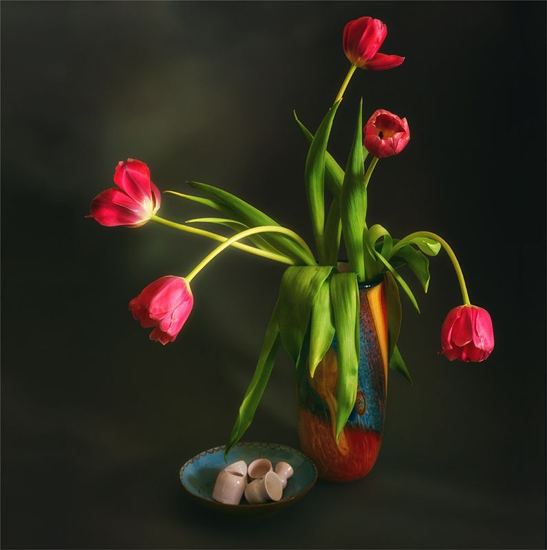 still life, натюрморт,    винтаж,  цветы, растение, природа, тюльпан, натюрморт с тюльпанамиphoto preview