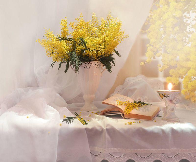 still life,натюрморт,фото натюрморт, весна, март,цветы, мимозы,подсвечник, свеча, праздник, 8 марта Охапку терпких веток в солнечной капели...photo preview