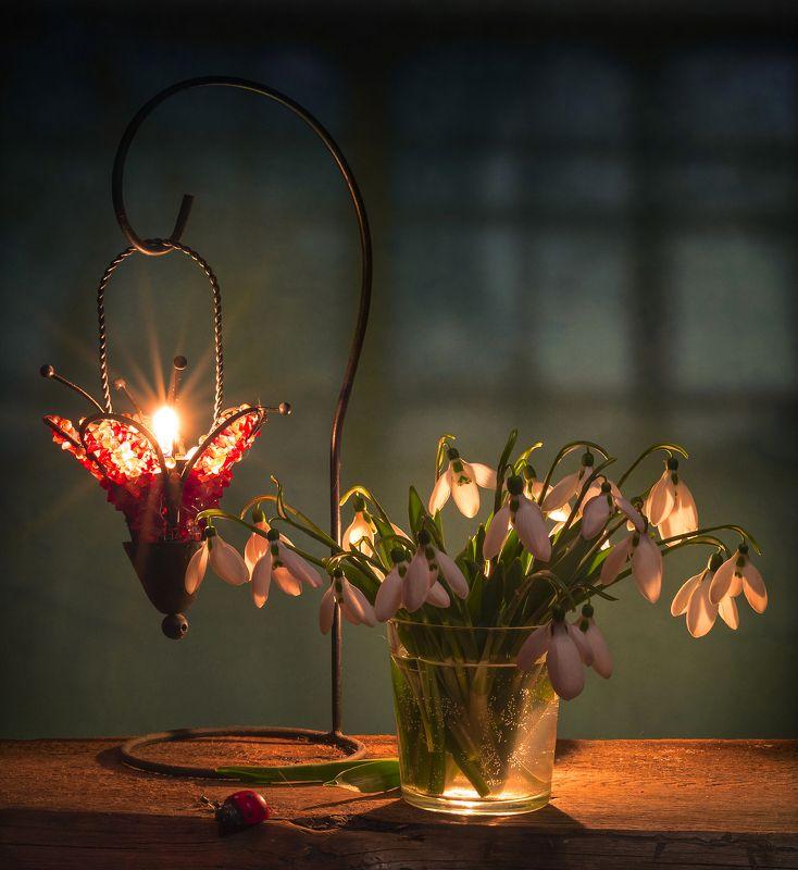 пожснежники,свеча,ночь,натюрморт Ночь с подснежникамиphoto preview
