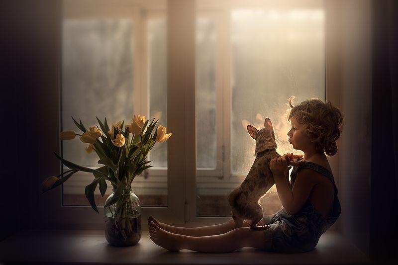 мальчик, закат, весна, тюльпаны Весенние закатыphoto preview