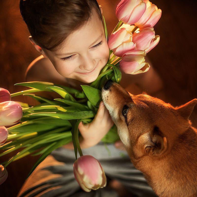 мальчик, сын, собака, праздник, весна Любимый сыночекphoto preview