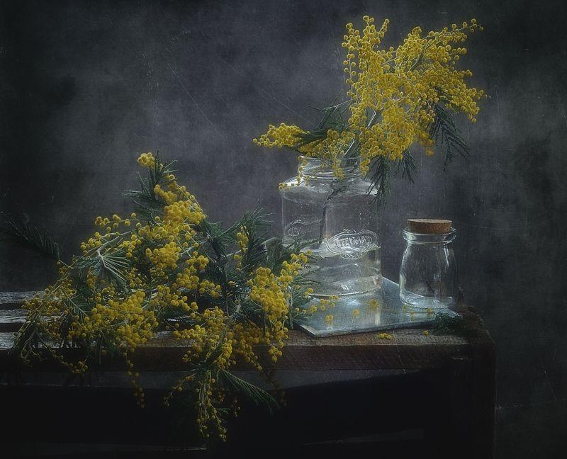 натюрморт,цветы,мимоза,весна ...photo preview