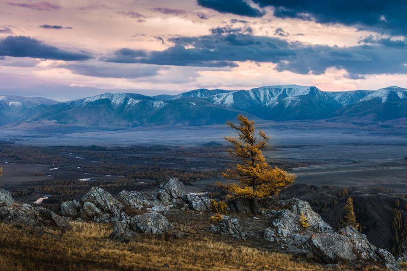осень, алтай, чуя, степь, горы Назло всем ветрамphoto preview