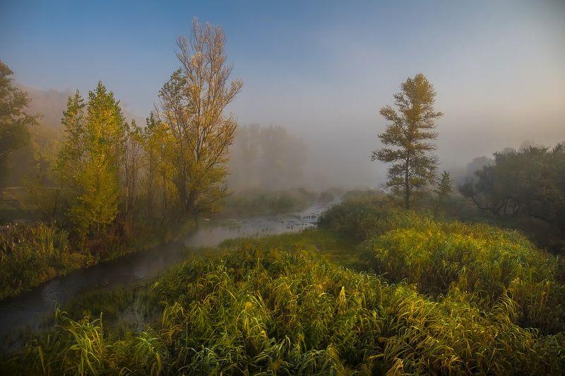 пейзаж, туман, природа, панорама, photo preview