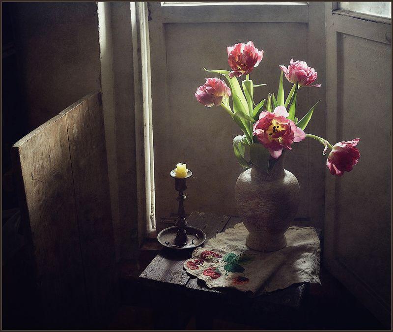 Тюльпаны..photo preview