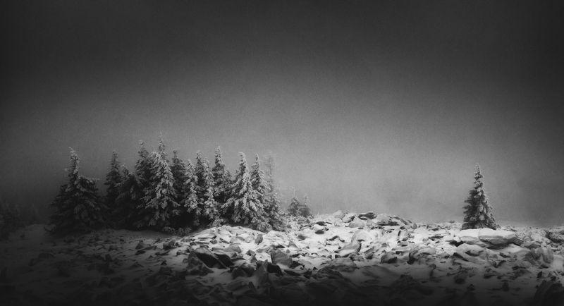 На перевалах Уреньгиphoto preview