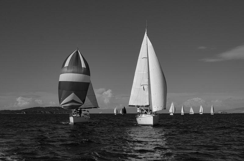 sail,sailing,sea,sky,boats,blue, Sailphoto preview