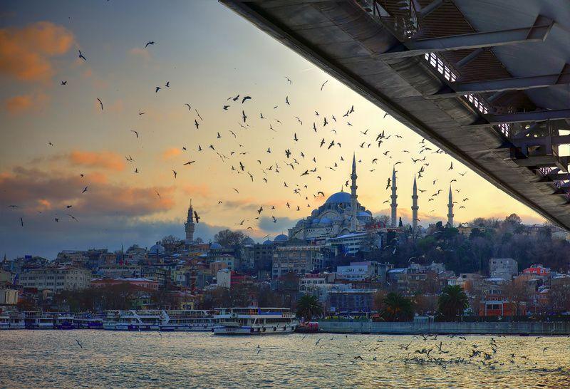 стамбул, турция, путешествия Under the bridgephoto preview