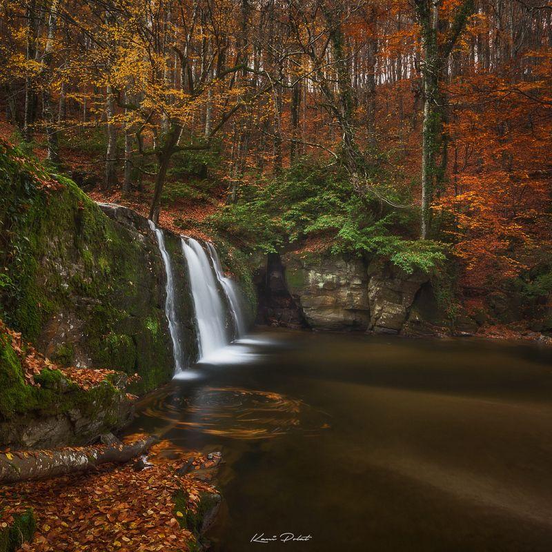 Autumn sceneryphoto preview