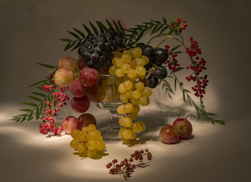 grape,red,green,light,wine, grapesphoto preview