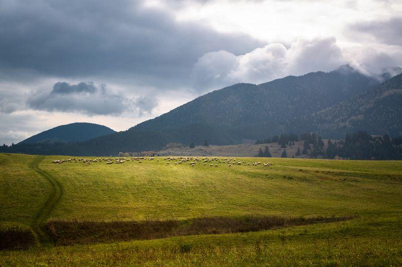 slovakia, tatry photo preview