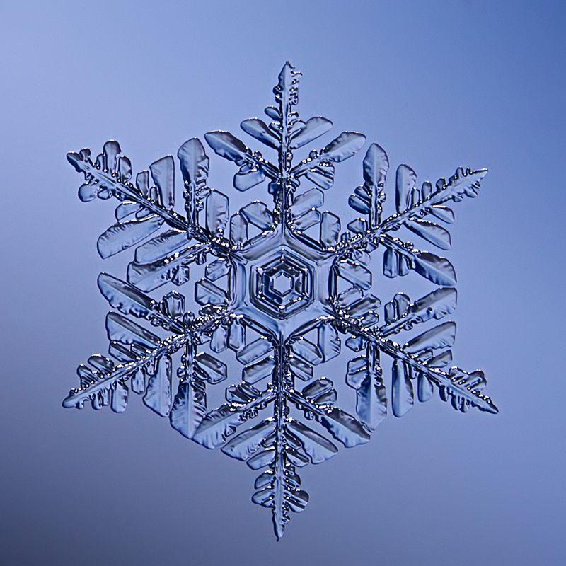 снег, снежинка, снежинки, макро, кристалл Мартовский снегphoto preview