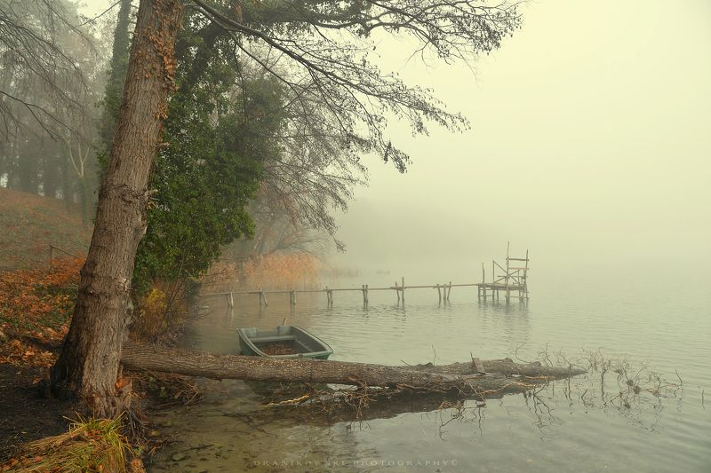 melancholy at the lake тоска по озеру water foggy morning mist magic dranikowski лодка boat tree melancholy at the lakephoto preview