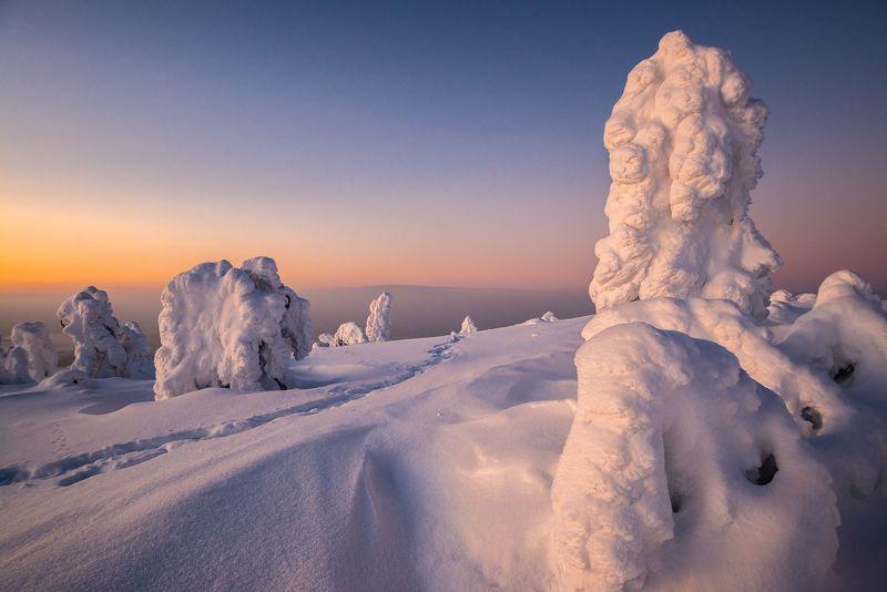север, кольский, заполярье, кандалакша,гора волостная Вечерняя.photo preview