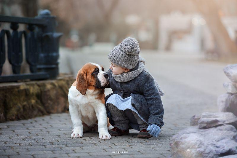 портрет, зима, winter, девочка, girl, животные, собака, сенбернар, прогулка, щенок, dog, друзья, эмоции, дружба, разговор, солнышко, лучи, happy, фотосессия на природе, фото дети, детские фотографии, happiness, сказка, волшебство ***photo preview