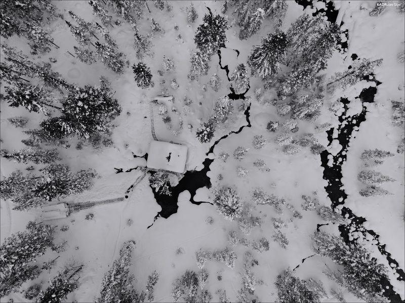 Хамар дабан, Мамай , Восточная Сибирь +photo preview