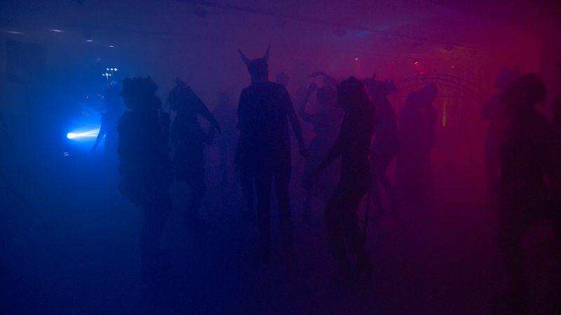 вечеринка, животные, костюмы, маскарад, цвет, Вечеринка животных.photo preview
