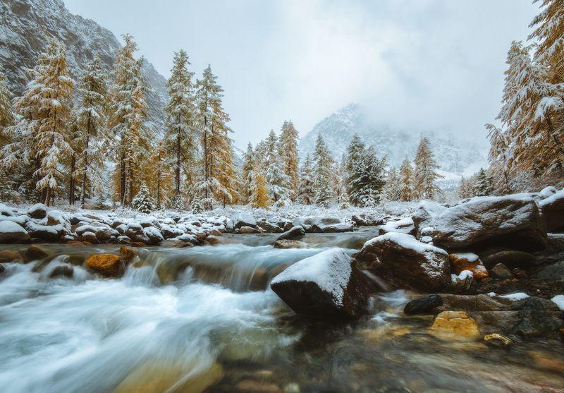 россия, алтай, республика алтай, горный алтай, природа, пейзаж, сибирь, горы, река, поток, снег, осень, актру Актруphoto preview