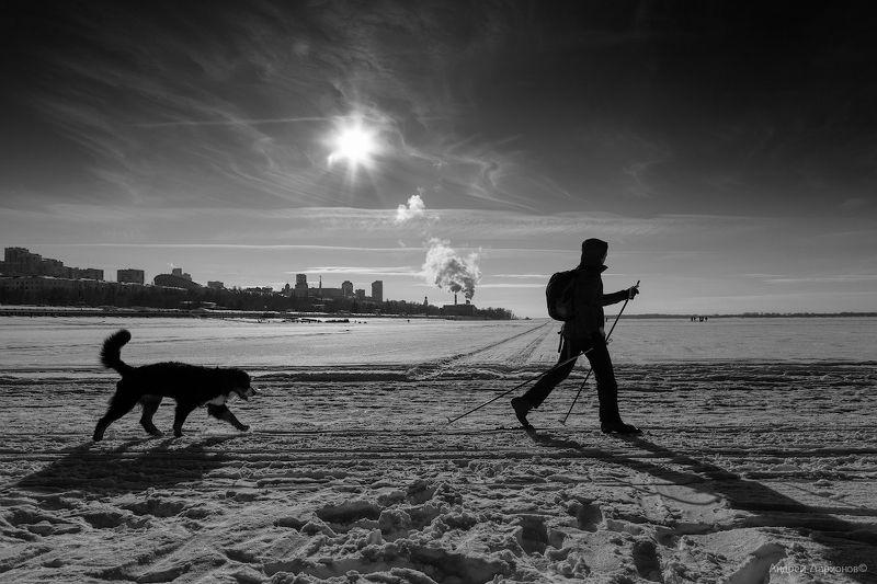 зима,пейзаж, река, лед, небо, собака, андрейларионов Переходphoto preview