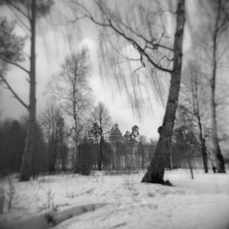 hоlga пейзаж весна парк \