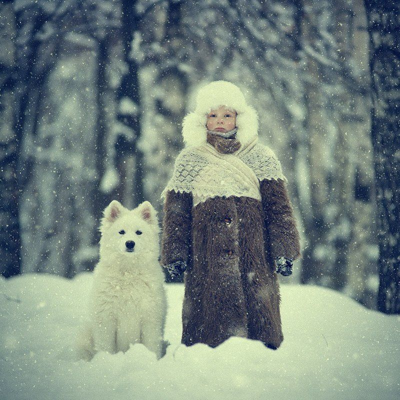 мальчик, собака, самоед, снег, лес, шуба, зима, дружба, холод Снежокphoto preview