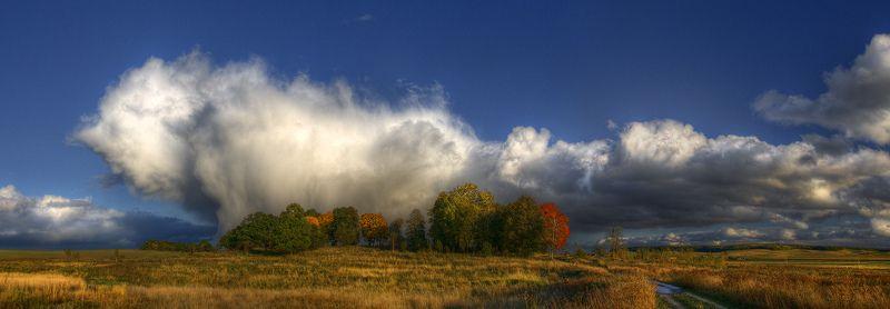 осень, деревья, туча, гроза | Неординарный октябрь |photo preview
