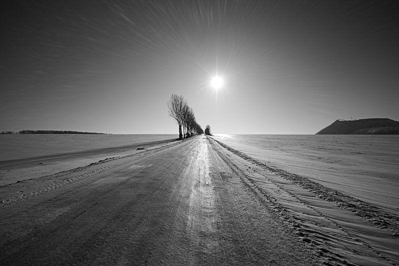 перспектива, дорога, блики, зима, деревья, солигорск | УБЕГАЯ ВДАЛЬ |photo preview