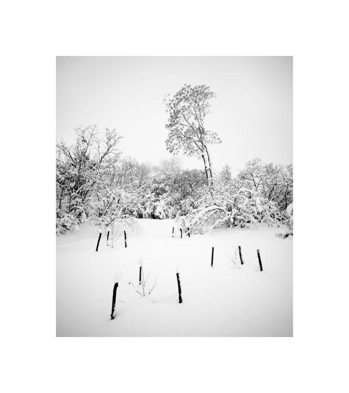 пейзаж, природа, зима, панорама || | | || | | |photo preview