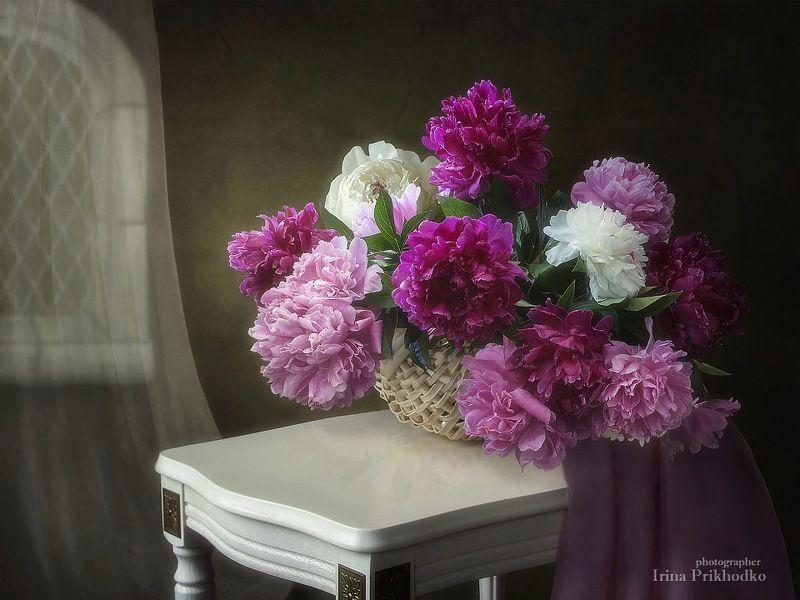 натюрморт, весна, пионы, букет, интерьер Натюрморт с букетом пионовphoto preview
