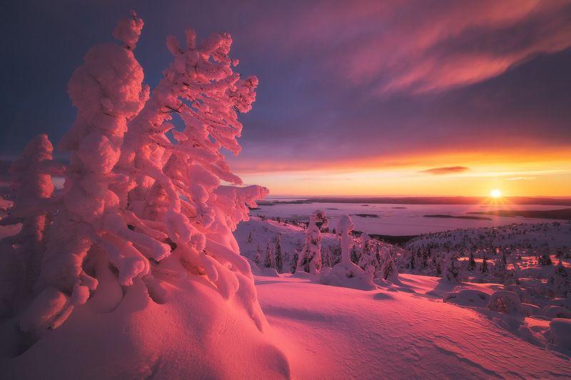 россия, кольский полуостров, мурманская область, кандалакша, природа, пейзаж, зима, горы, сопка, снег, закат, лесотундра, белое море Заполярный закатphoto preview