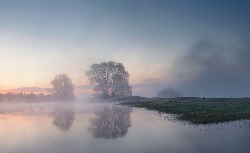 природа утро солнце туман деревья Пробуждениеphoto preview