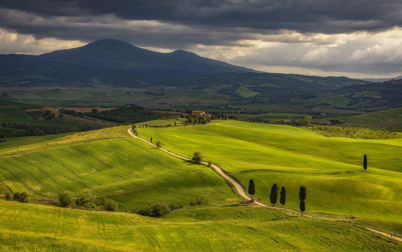 италия, тоскана, поля по дорогеphoto preview