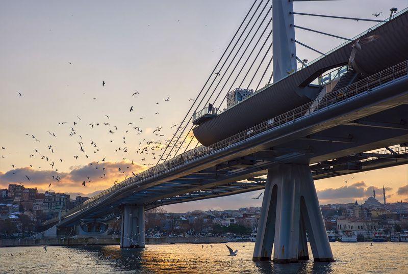 путешествия, стамбул, турция Метромостphoto preview