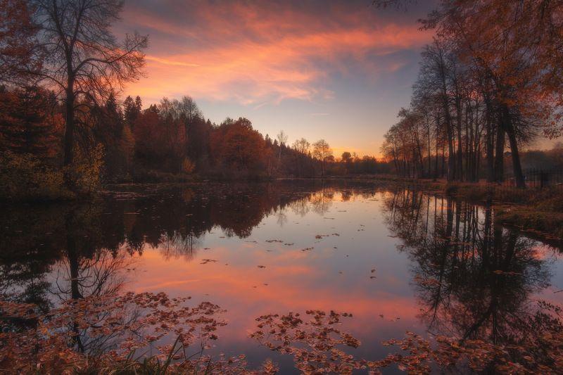 россия, московская область, середниково, вечер, заход солнца, закат, сумерки, усадьбы, осень, пруд, пейзаж, природа Подмосковный вечерphoto preview