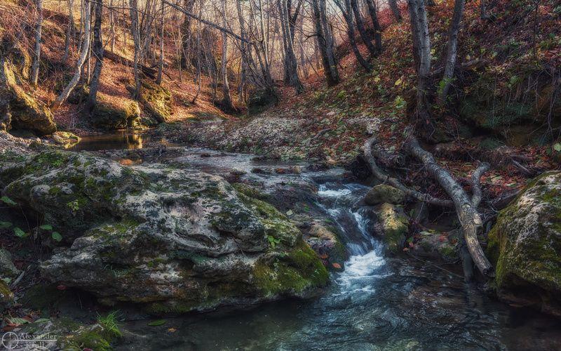 Утро у лесного порожка...photo preview