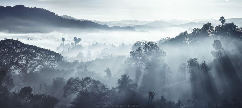myanmar, burma, balloon, landscape, scenic, Только утренний свет и туман.photo preview