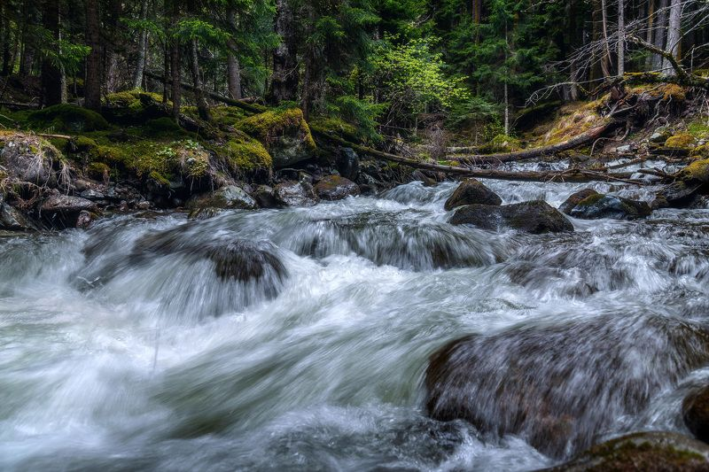 mountains, river, forest, nature,   река, горы, пейзаж, лес, кавказ, архыз, р. Пшиш.photo preview