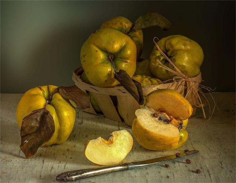 still life, натюрморт,    винтаж,   еда,  спелый, вкусный,  свет,  тень, айва, фрукты, нож, натюрморт с айвойphoto preview