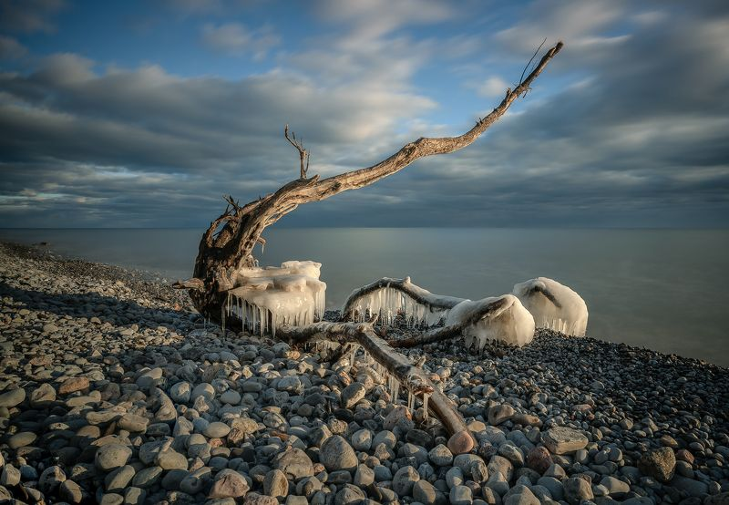 snag, beach, lake, clouds, stones, ice, spring, коряга, пляж, озеро, облака, камни, лёд, весна Monsterphoto preview