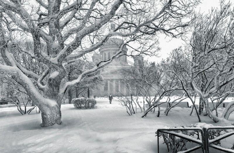 город,снег,метель,снегопад,люди,собор,храм,деревья Метель.photo preview