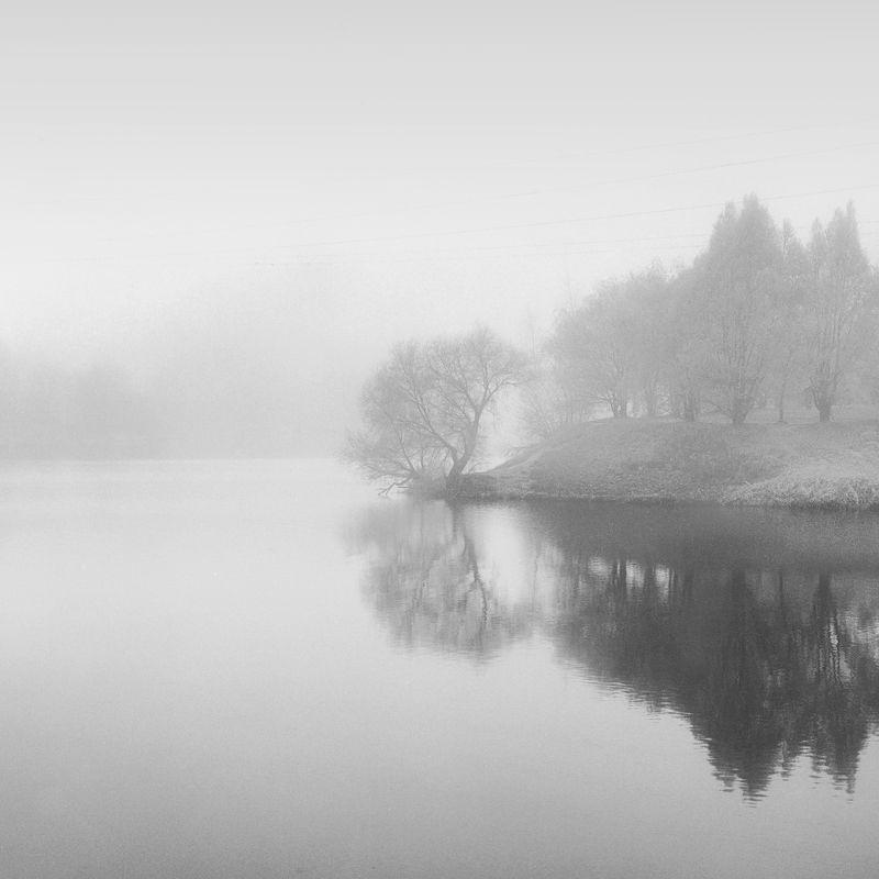 hasseldlad утро туман \