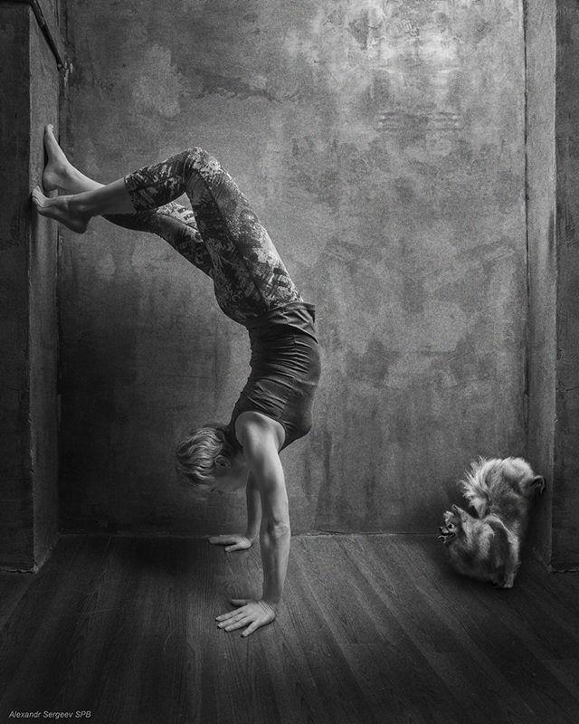 женщина,спорт,акробатка,шпиц,юмор,арт,фото-арт Акробатический этюдphoto preview