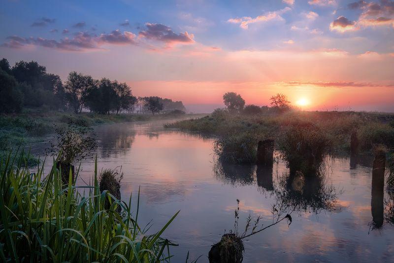 филипповское, шерна, река, утро, рассвет, туман, небо, сентябрь, восход, путешествие, пейзаж Конец летаphoto preview