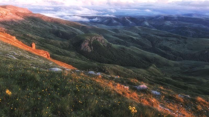 кавказ,горы,плато,цветы,закат. На склонах Бермамыта.photo preview