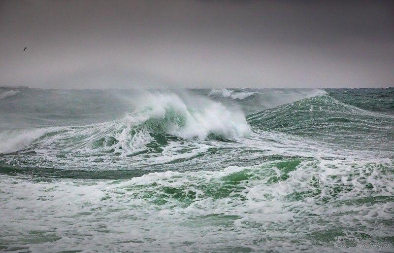 море,крым,пейзаж,шторм,россия,фототур,волна,волны,природа,севастополь Штормовое предупреждениеphoto preview