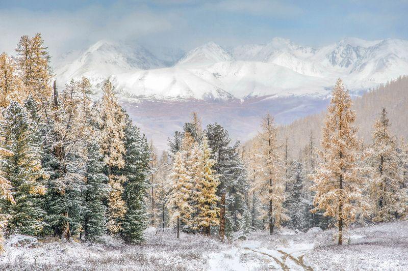 алтай,горы осень в горахphoto preview