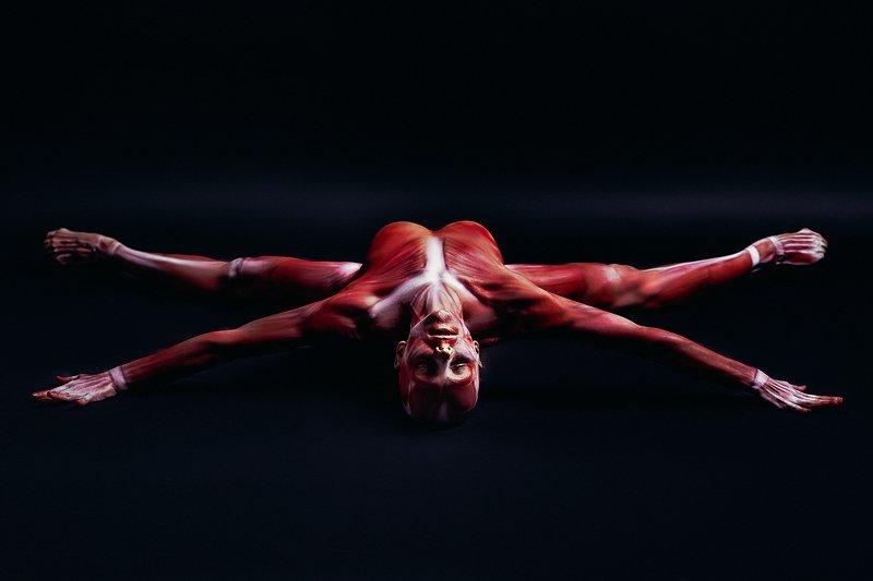 woman, beauty, fashion, body-art, studio, light Flesh and Bonephoto preview