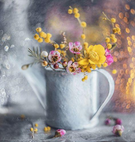 цветочное боке*